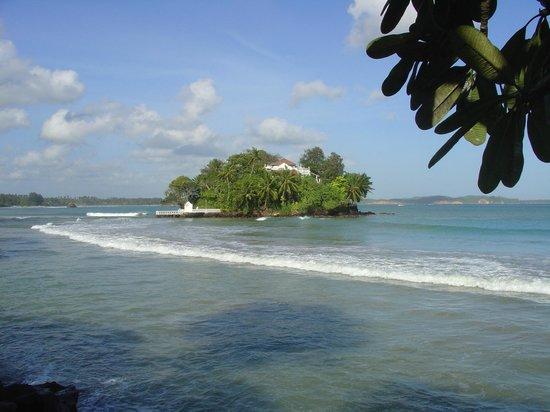 Ayurveda Paragon: Tabrobane Island