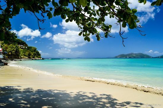 Cane Garden Bay: На пляже