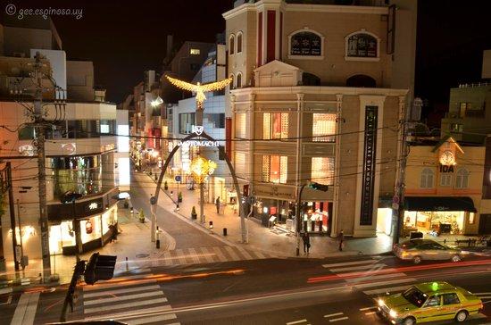 motomachi yokohama Gallery