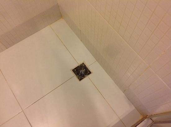 Rio Othon Palace Hotel: dirty shower drain...