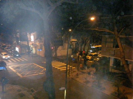 Ipanema Inn: Vista dalla camera
