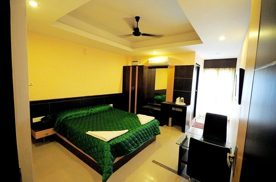 Hotel Shastri Paradise: DELUXE A/C D/R