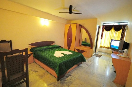 Hotel Shastri Paradise : Double bed room