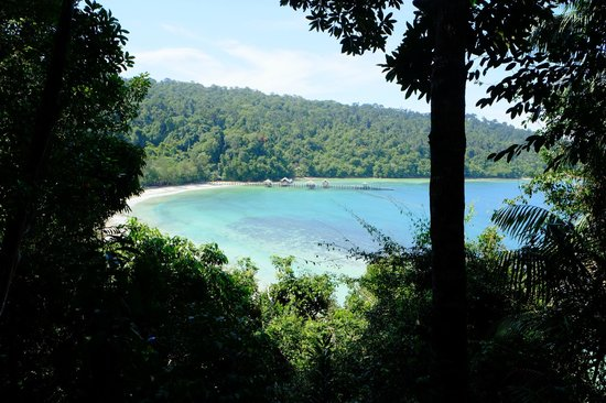 Bunga Raya Island Resort: View from Treetop Villa