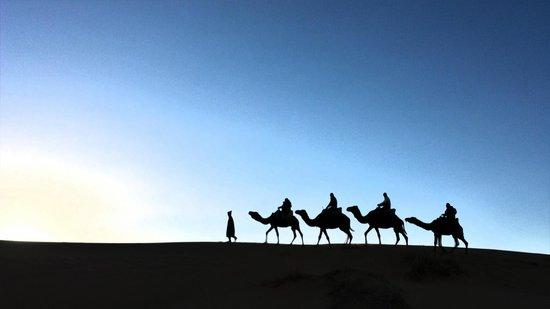 Auberge Dunes D'or: Sortie en dromadaires