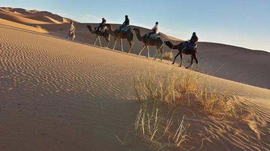 Auberge Dunes D'or: Sortie en dromadaires au coucher du soleil