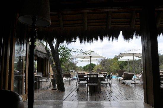Kapama River Lodge: A sombra é uma boa pedida para um descanso.