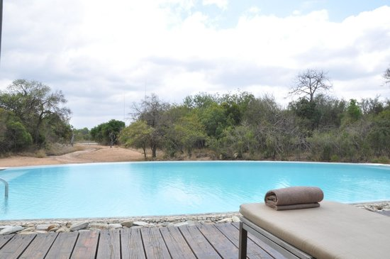 Kapama River Lodge: A piscina é um local de relax depois dos safáris.