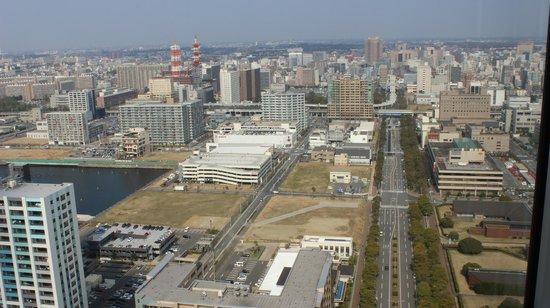 Chiba Port Tower: Вид на Токио