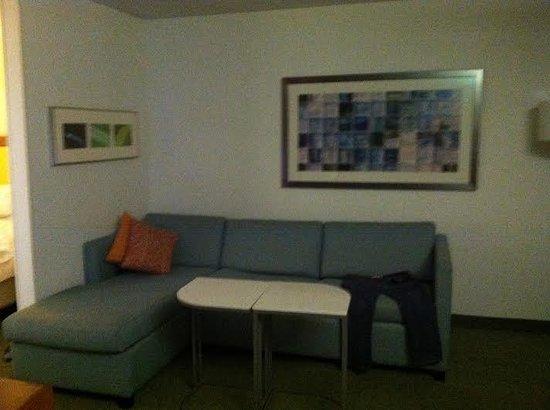 SpringHill Suites Cincinnati North/Forest Park : Living