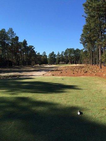 Pinehurst Course Number 2: Great hole