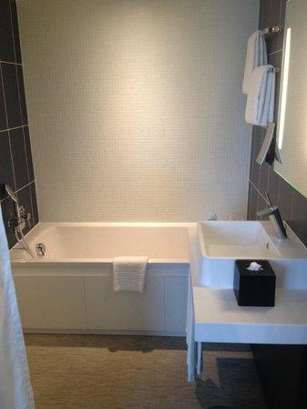 Novotel Suites Paris Issy les Moulineaux: bathroom