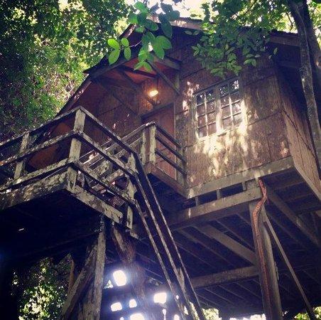 Permai Rainforest Resort: The treehouse