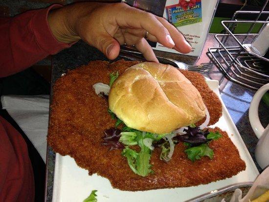 Newton's Paradise Cafe: Best tenderloin around big on size and taste!