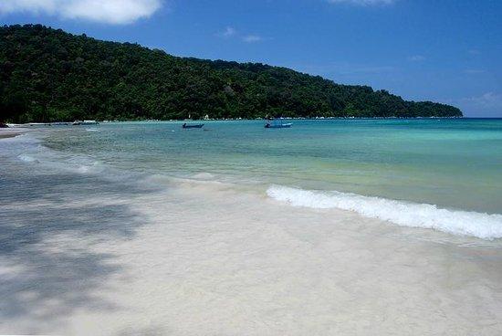 Bayu Dive Lodge: View around