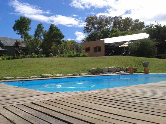 De Zeekoe Guest Farm: Der schön angelegte Garten mit Pool (Liegen und Handtücher)