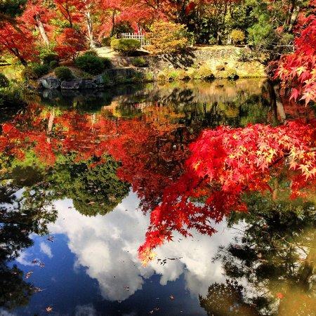 Toji-in Temple: 庭園 2013/11/21