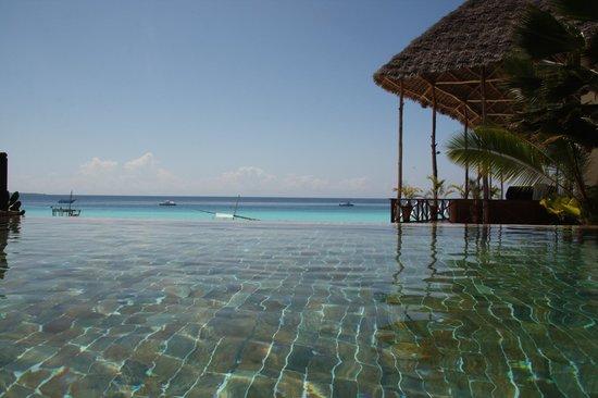 The Z Hotel Zanzibar: pool