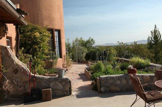 Casa de Suenos Country Inn: Garden just off the back patio