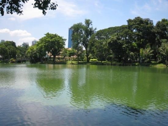 Lumpini Park: view