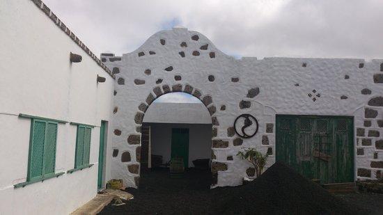 Bodega Los Almacenes -YE