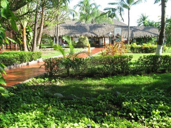 Meliá Puerto Vallarta All Inclusive: Jardin y Comedor