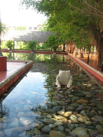 Meliá Puerto Vallarta All Inclusive: Estanque