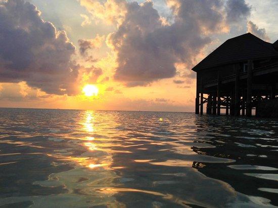 Kuredu Island Resort & Spa : Un coucher de soleil type sur Kuredu Resort.