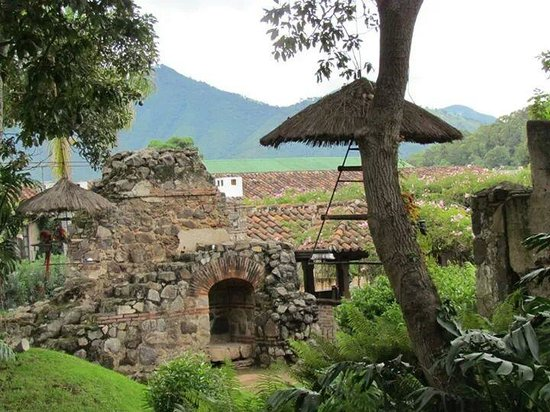 Hotel Museo Spa Casa Santo Domingo: Vegetação