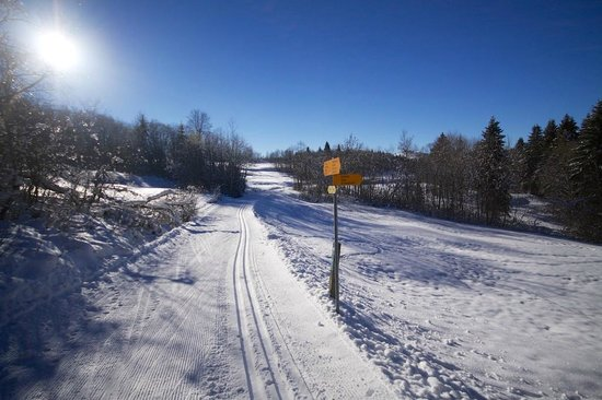 Toptrek Touren : Cross Country Skiing at Rothenthurm