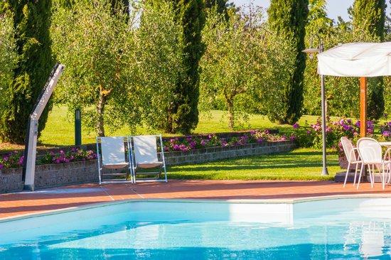 Agriturismo Santo Pietro : piscina