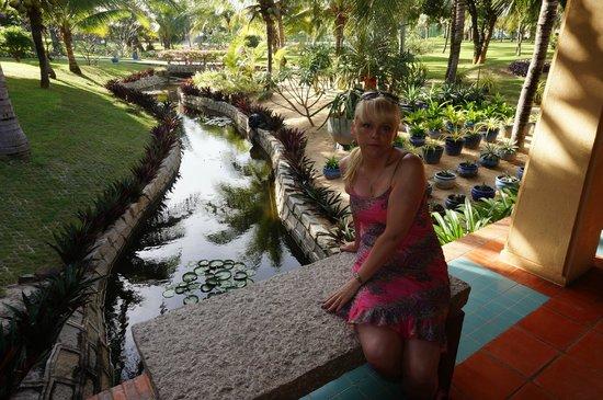 Pandanus Resort: Территория отеля очень красивая