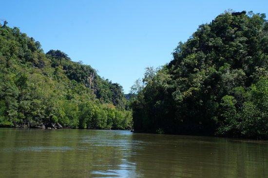 Kilim Karst Geoforest Park: Mangrove tour