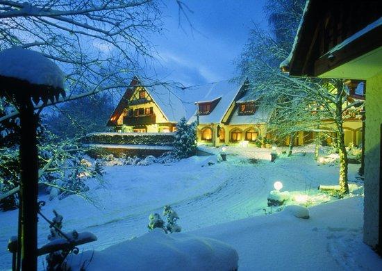Hostellerie La Cheneaudiere - Relais & Chateaux: La Cheneaudière sous la neige