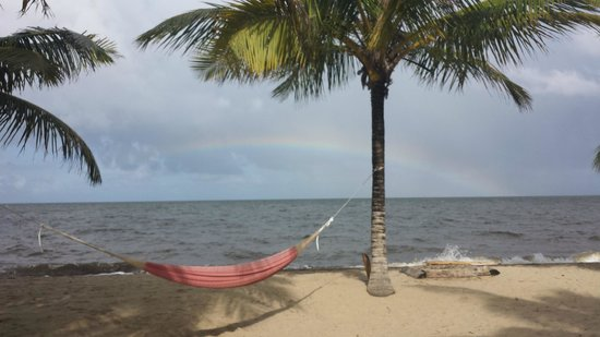 Hamanasi Adventure and Dive Resort: Swinging enjoying the rainbow over the ocean