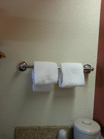 Red Roof Inn Pensacola - West Florida Hospital: Hand towels next to sink
