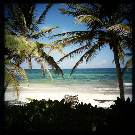 The Beach Tulum: Our view.  Breathtaking.