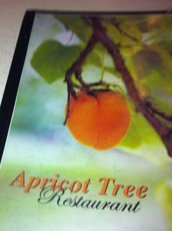 Apricot Tree: Good menu, reasonable prices.