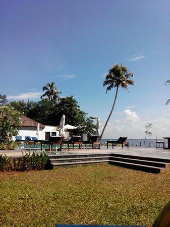 Deshadan Backwater Resort : view from the garden
