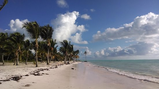 Sanctuary Cap Cana by Playa Hotels & Resorts: larger public beach right next to the resort - had it all to ourselves!