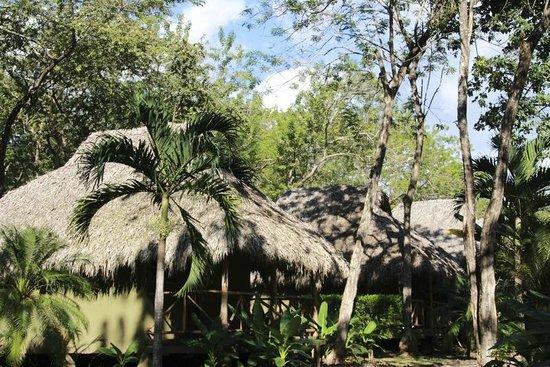 Sol y Luna Lodge: Bungalows