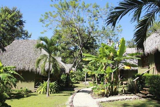 Sol y Luna Lodge: The bungalows area