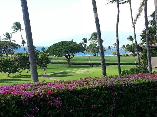 Maui Eldorado: View from lanai E100
