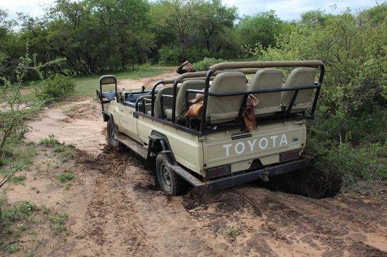 The Vuyani Safari Lodge: Stuck in the mud
