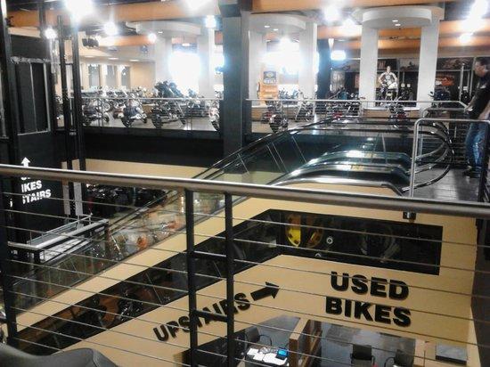 Wyndham Ocean Walk: Area Activity at Harley Davidson Store