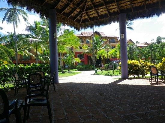 Caribe Club Princess Beach Resort & Spa: buffet