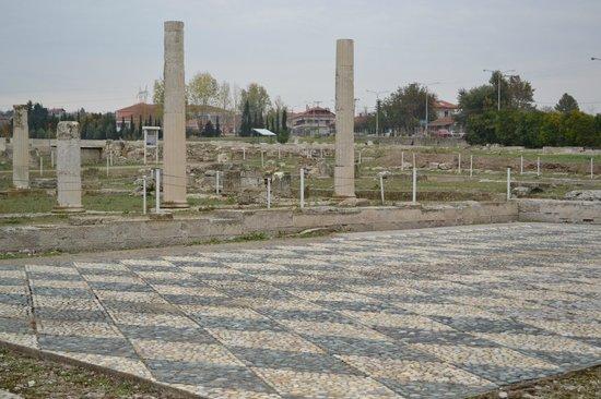 раскопки под открытым небом в Пелле (Pella, Central Macedonia, Greece)