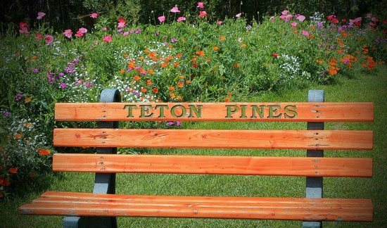 Teton Pines Country Club: A lovely place to sit