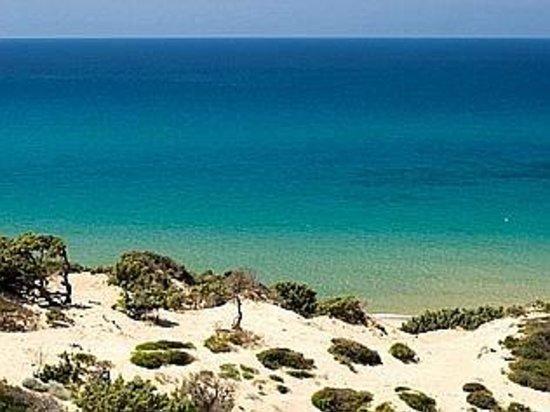 Home Mini Resort : dune