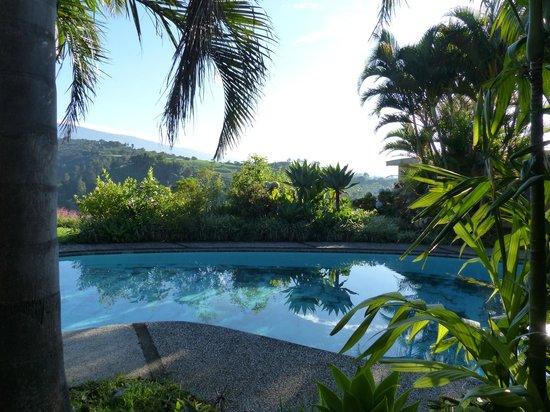 Hotel Paraiso Rio Verde: Pool with view of Poas
